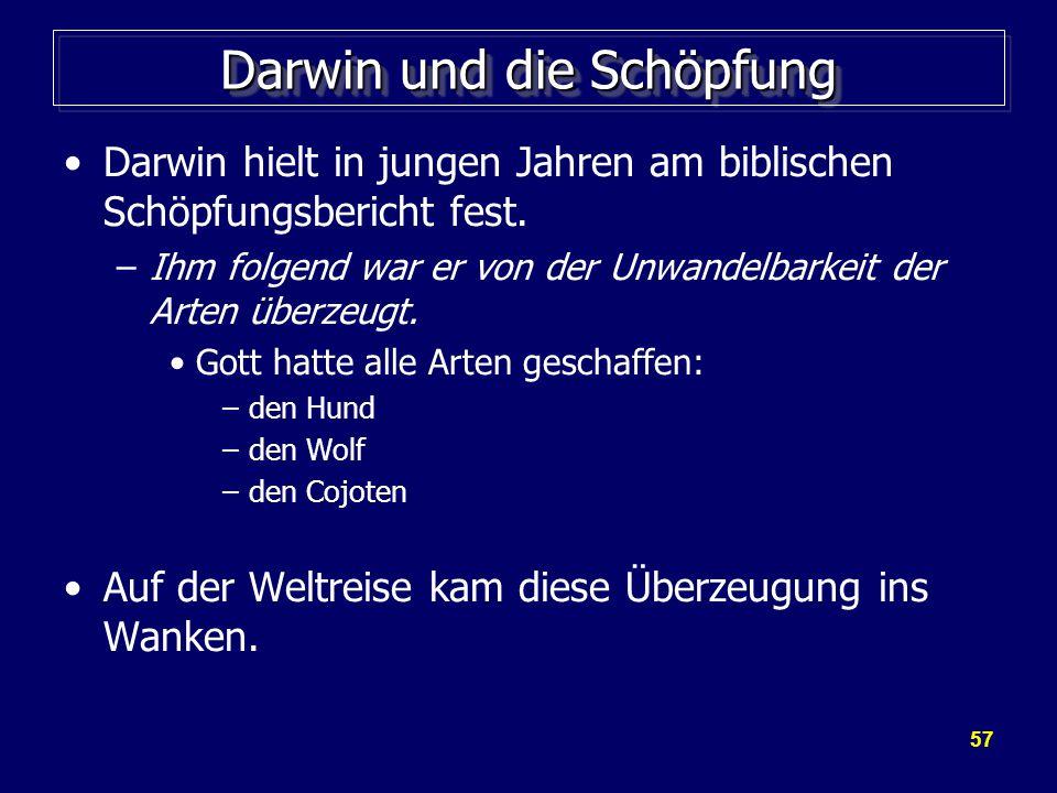 Darwin und die Schöpfung