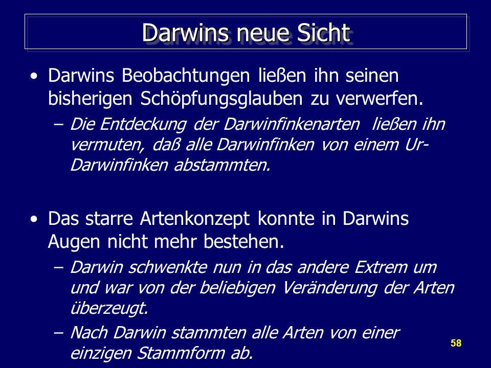 Darwins neue Sicht Darwins Beobachtungen ließen ihn seinen bisherigen Schöpfungsglauben zu verwerfen.