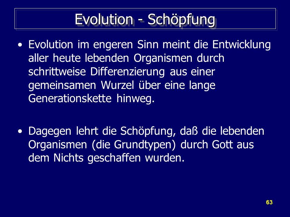 Evolution - Schöpfung