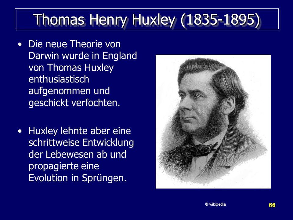 Thomas Henry Huxley (1835-1895)