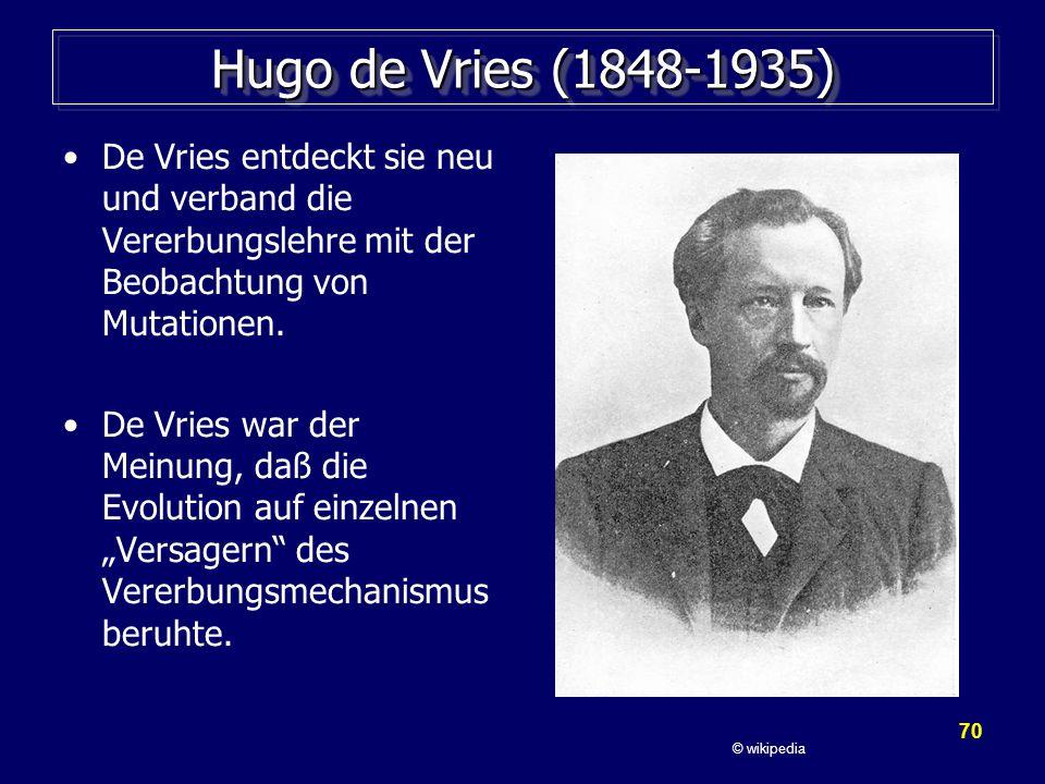 Hugo de Vries (1848-1935) De Vries entdeckt sie neu und verband die Vererbungslehre mit der Beobachtung von Mutationen.