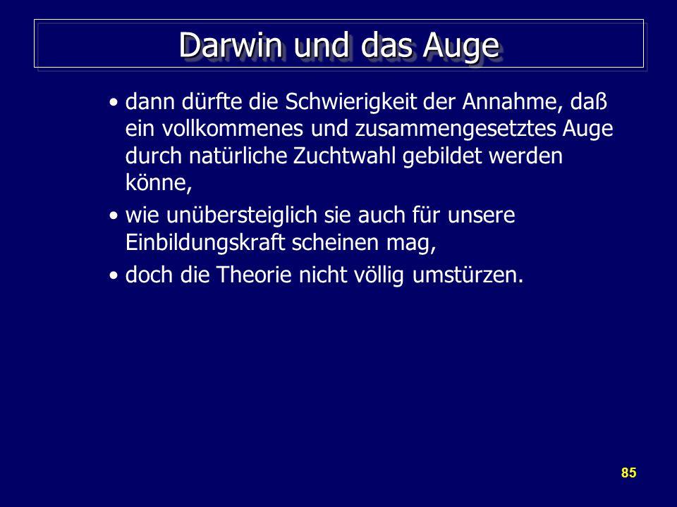 Darwin und das Auge