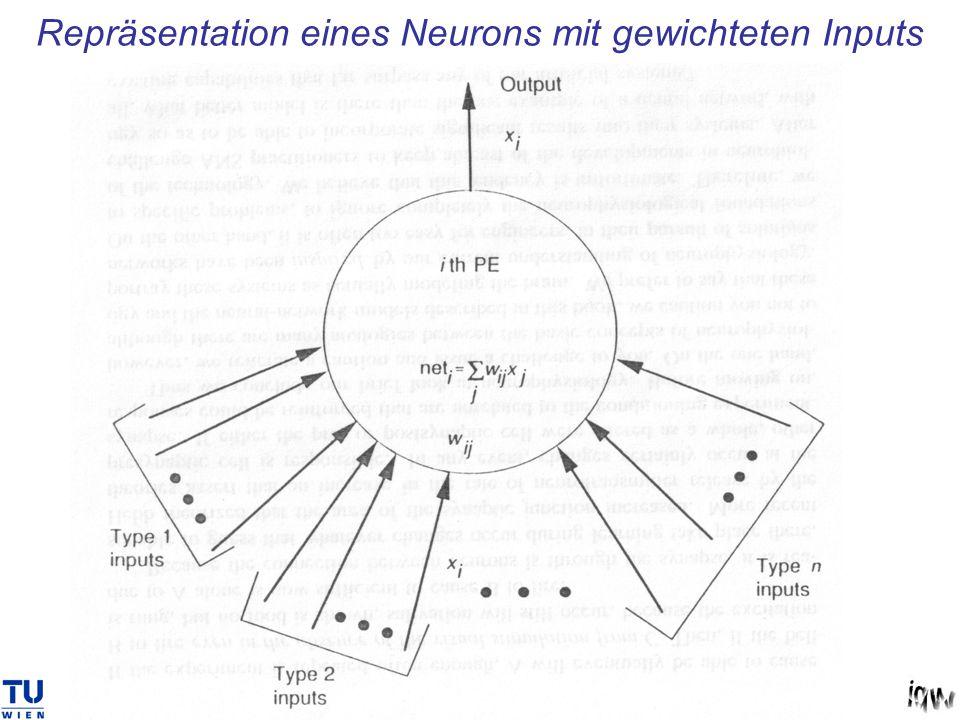Repräsentation eines Neurons mit gewichteten Inputs