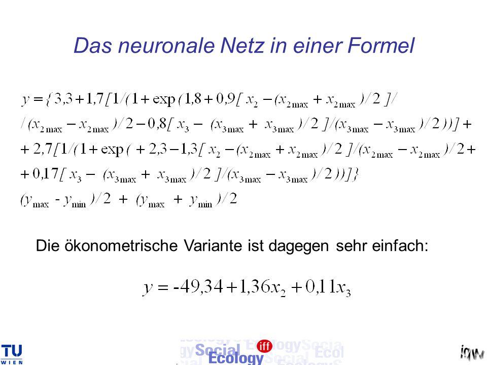 Das neuronale Netz in einer Formel