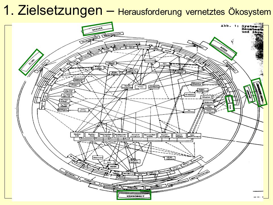 1. Zielsetzungen – Herausforderung vernetztes Ökosystem
