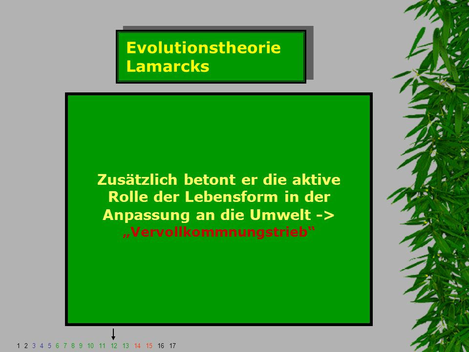 Evolutionstheorie Lamarcks