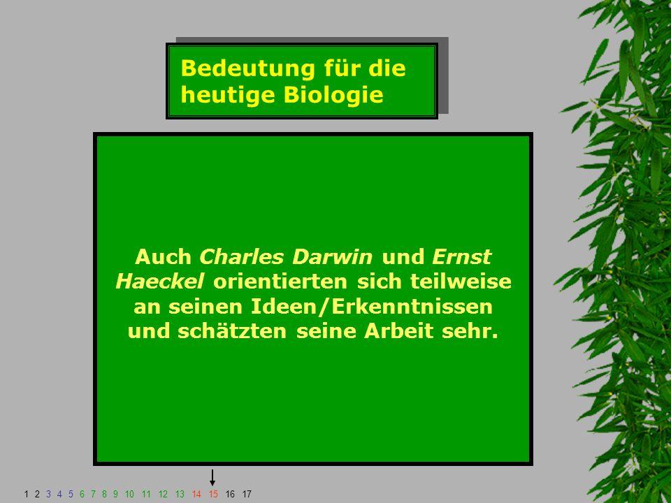 Bedeutung für die heutige Biologie