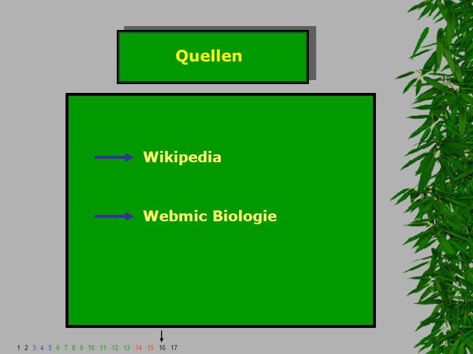 Quellen Wikipedia Webmic Biologie 1 2 3 4 5 6 7 8 9 10 11 12 13 14 15