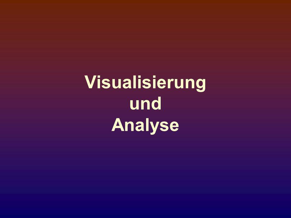 Visualisierung und Analyse