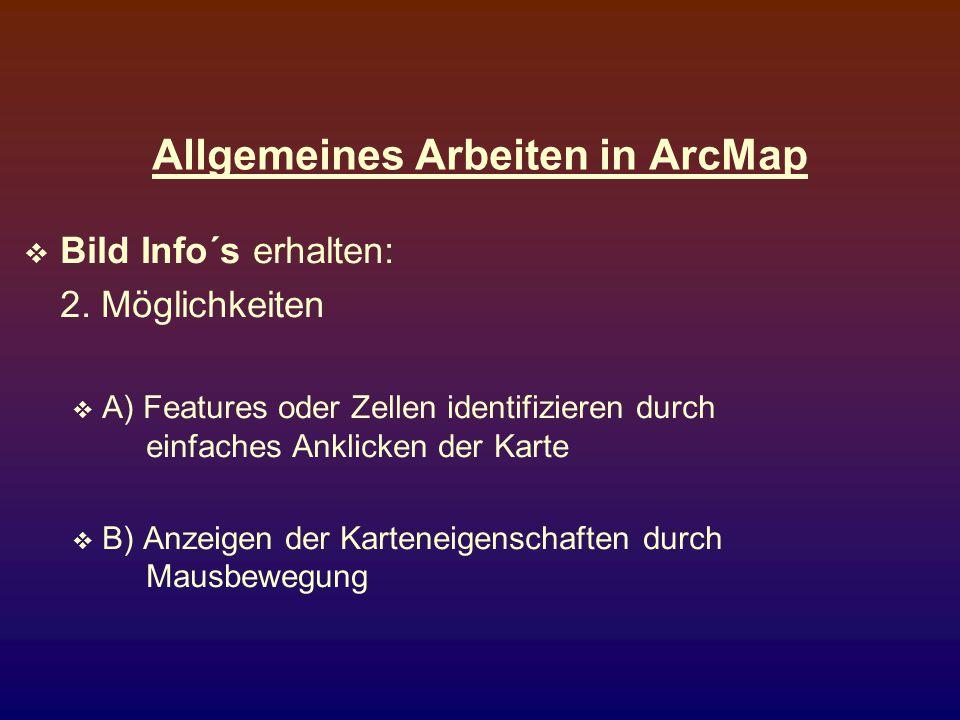 Allgemeines Arbeiten in ArcMap