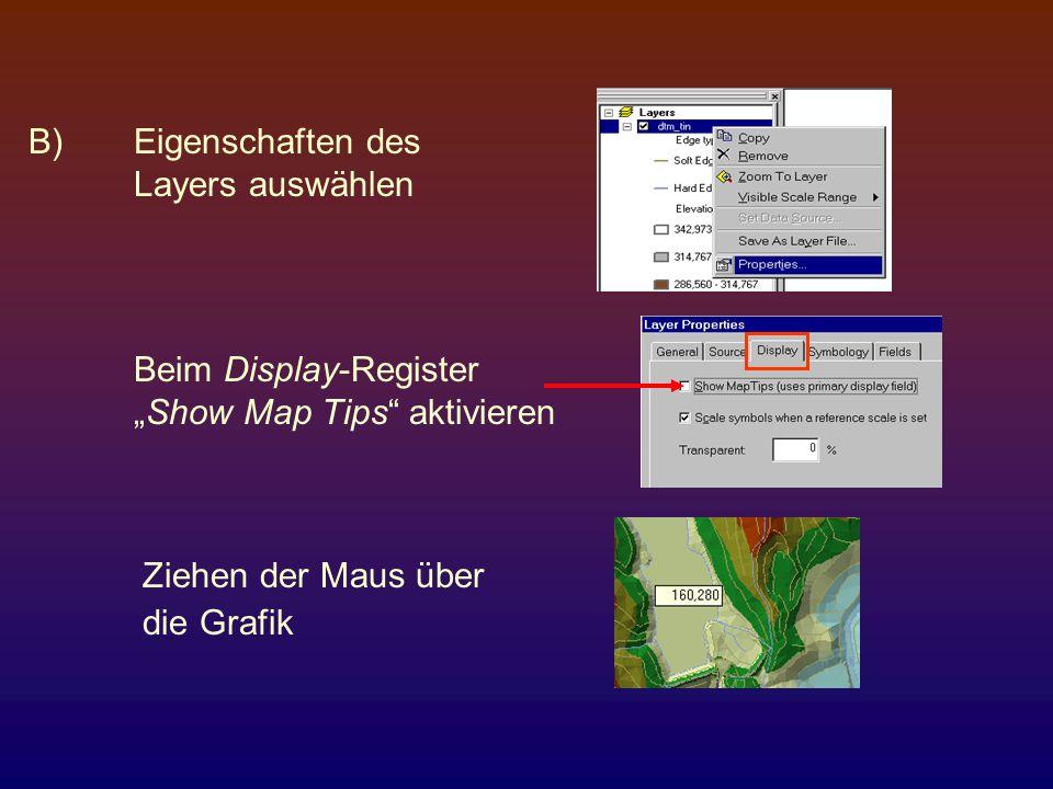 """B) Eigenschaften des Layers auswählen. Beim Display-Register. """"Show Map Tips aktivieren. Ziehen der Maus über."""