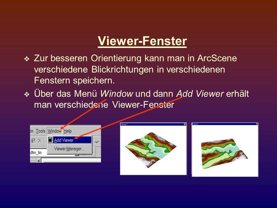 Viewer-Fenster Zur besseren Orientierung kann man in ArcScene verschiedene Blickrichtungen in verschiedenen Fenstern speichern.