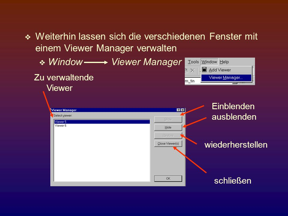 Weiterhin lassen sich die verschiedenen Fenster mit einem Viewer Manager verwalten