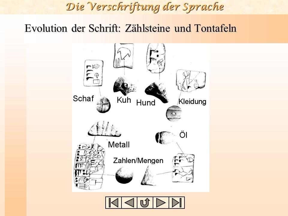 Evolution der Schrift: Zählsteine und Tontafeln