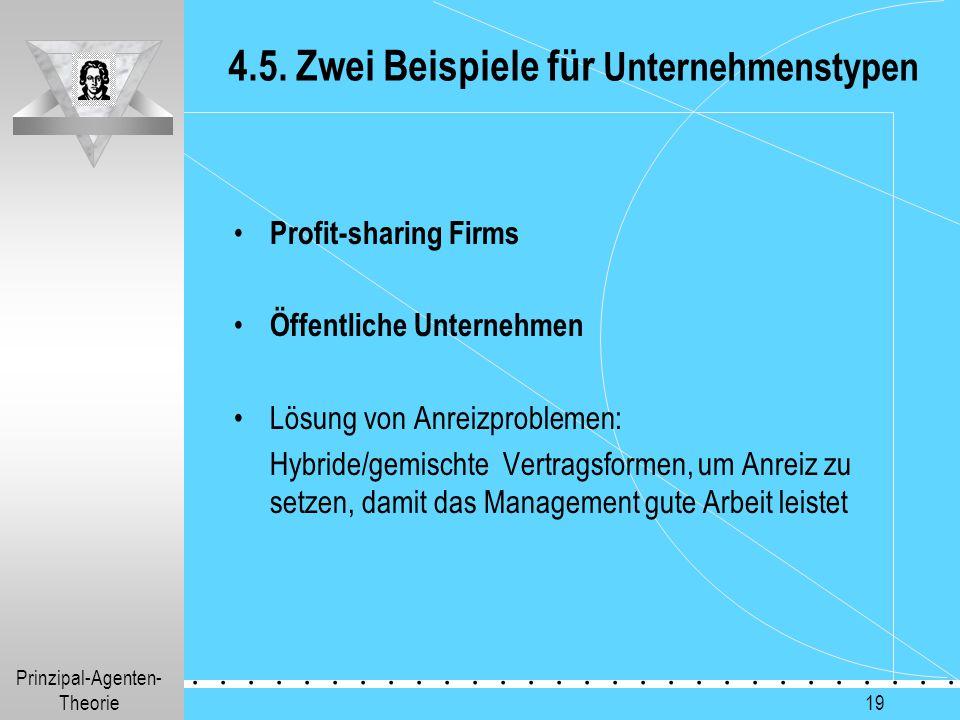 4.5. Zwei Beispiele für Unternehmenstypen