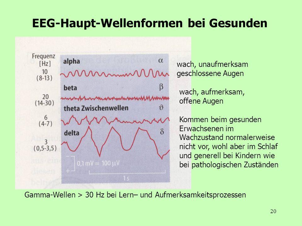 EEG-Haupt-Wellenformen bei Gesunden