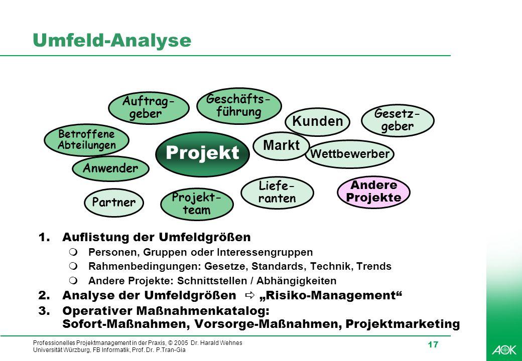 Umfeld-Analyse Projekt Kunden Markt Geschäfts- Auftrag- führung geber