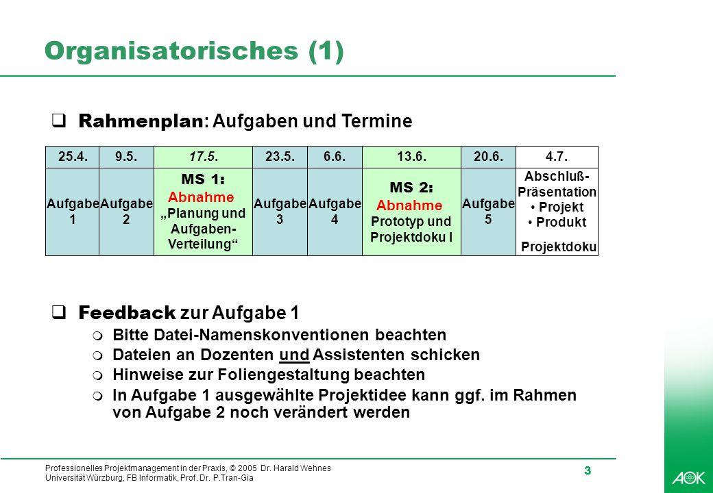 Organisatorisches (1) Rahmenplan: Aufgaben und Termine