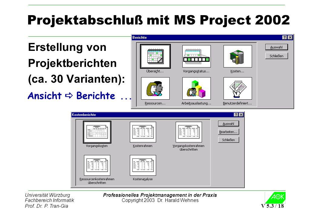 Projektabschluß mit MS Project 2002