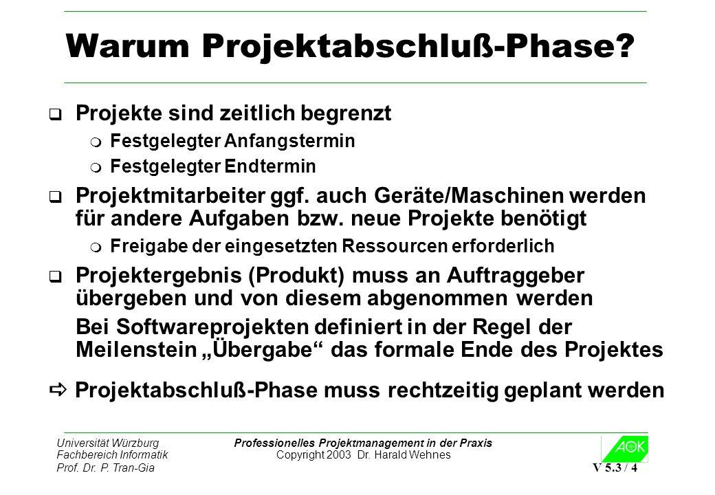 Warum Projektabschluß-Phase