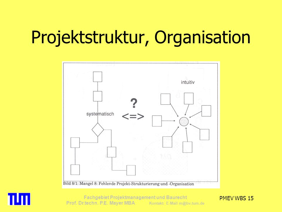 Projektstruktur, Organisation