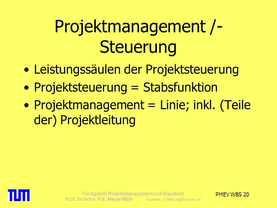 Projektmanagement /-Steuerung