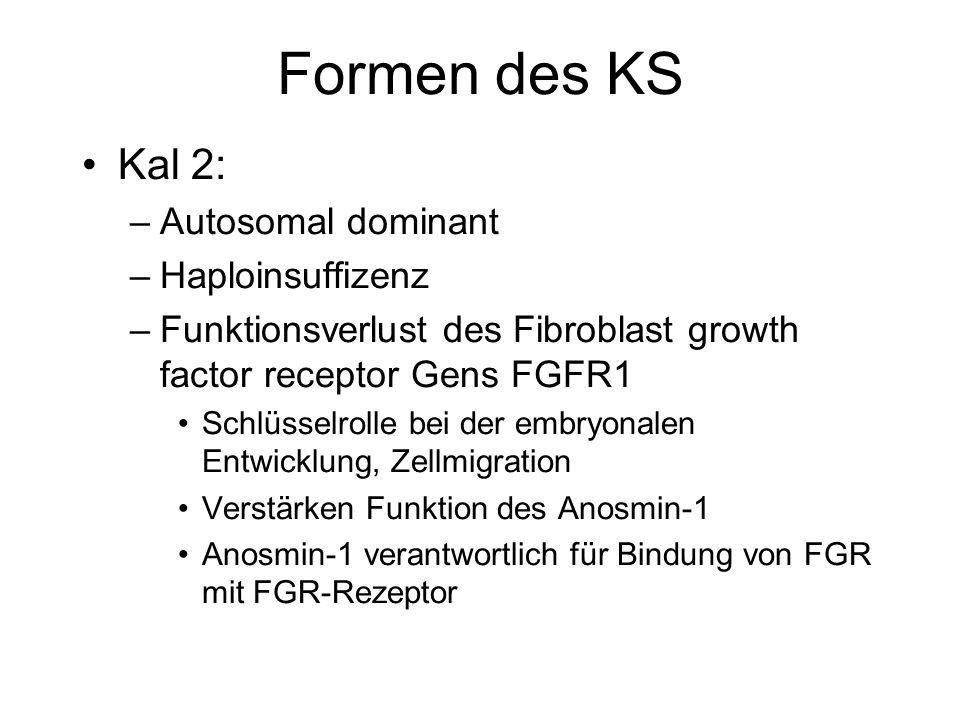 Formen des KS Kal 2: Autosomal dominant Haploinsuffizenz