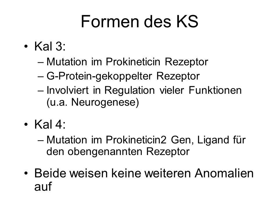 Formen des KS Kal 3: Kal 4: Beide weisen keine weiteren Anomalien auf