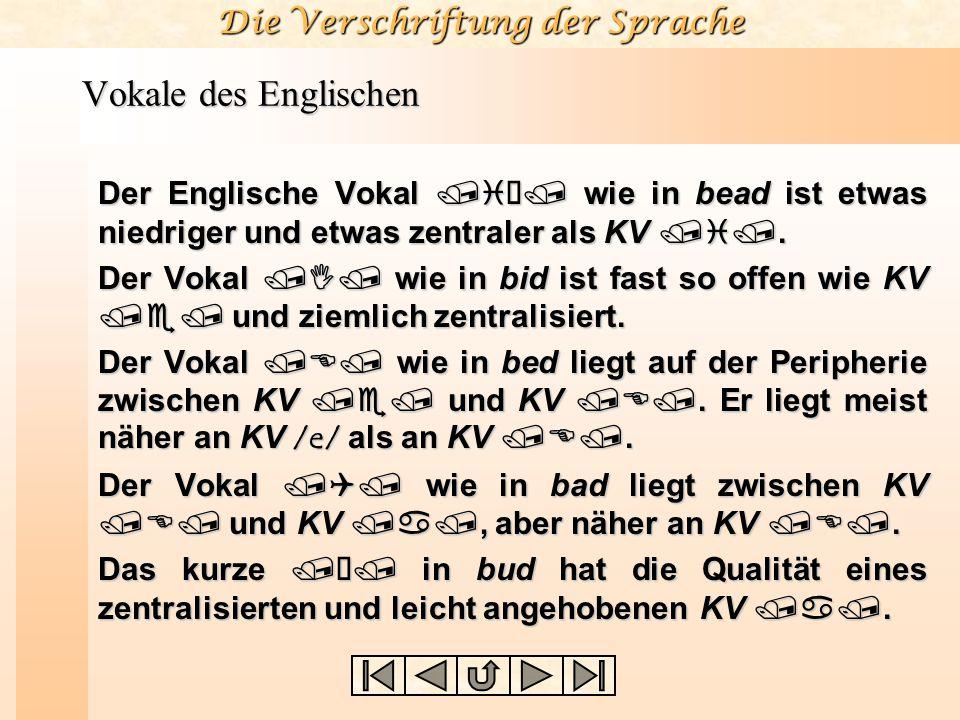 Vokale des Englischen Der Englische Vokal /iù/ wie in bead ist etwas niedriger und etwas zentraler als KV /i/.