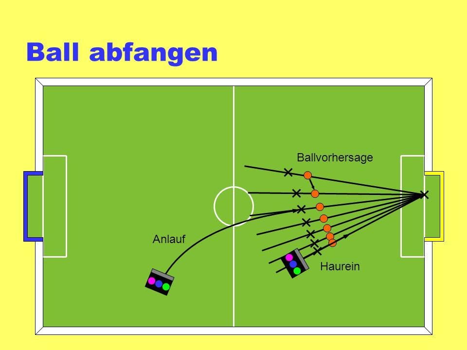 Ball abfangen Ballvorhersage Anlauf Haurein