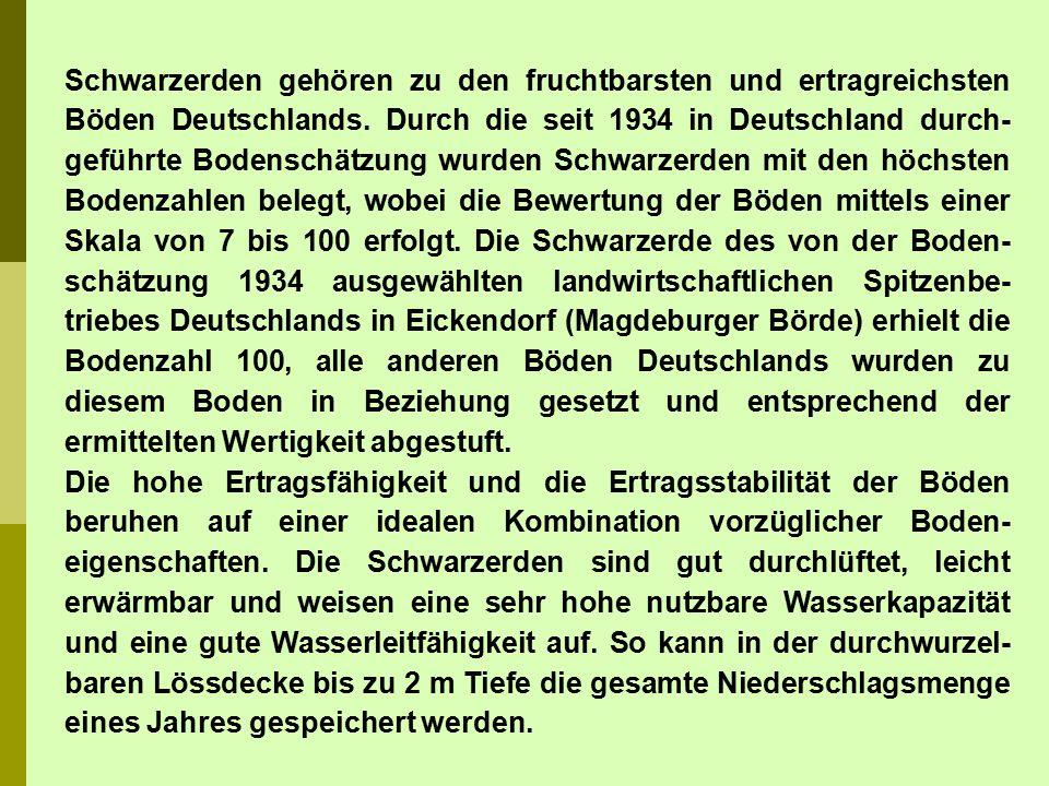 Schwarzerden gehören zu den fruchtbarsten und ertragreichsten Böden Deutschlands. Durch die seit 1934 in Deutschland durch-geführte Bodenschätzung wurden Schwarzerden mit den höchsten Bodenzahlen belegt, wobei die Bewertung der Böden mittels einer Skala von 7 bis 100 erfolgt. Die Schwarzerde des von der Boden-schätzung 1934 ausgewählten landwirtschaftlichen Spitzenbe-triebes Deutschlands in Eickendorf (Magdeburger Börde) erhielt die Bodenzahl 100, alle anderen Böden Deutschlands wurden zu diesem Boden in Beziehung gesetzt und entsprechend der ermittelten Wertigkeit abgestuft.
