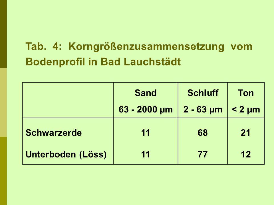 Tab. 4: Korngrößenzusammensetzung vom Bodenprofil in Bad Lauchstädt