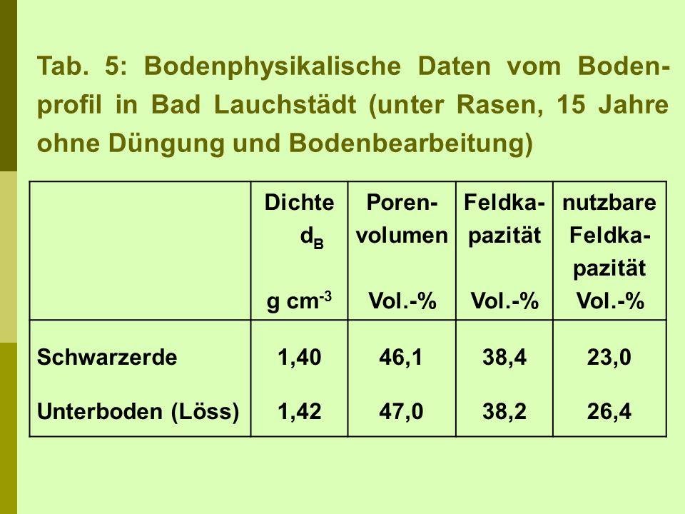 Tab. 5: Bodenphysikalische Daten vom Boden-profil in Bad Lauchstädt (unter Rasen, 15 Jahre ohne Düngung und Bodenbearbeitung)