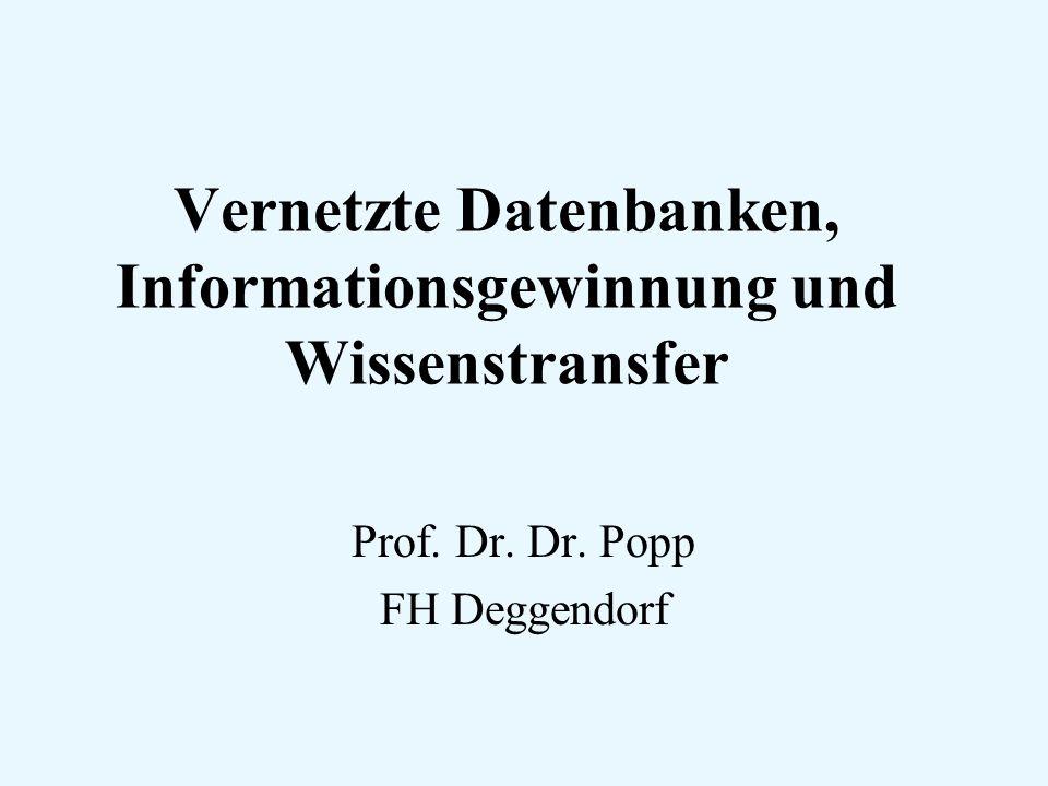 Vernetzte Datenbanken, Informationsgewinnung und Wissenstransfer