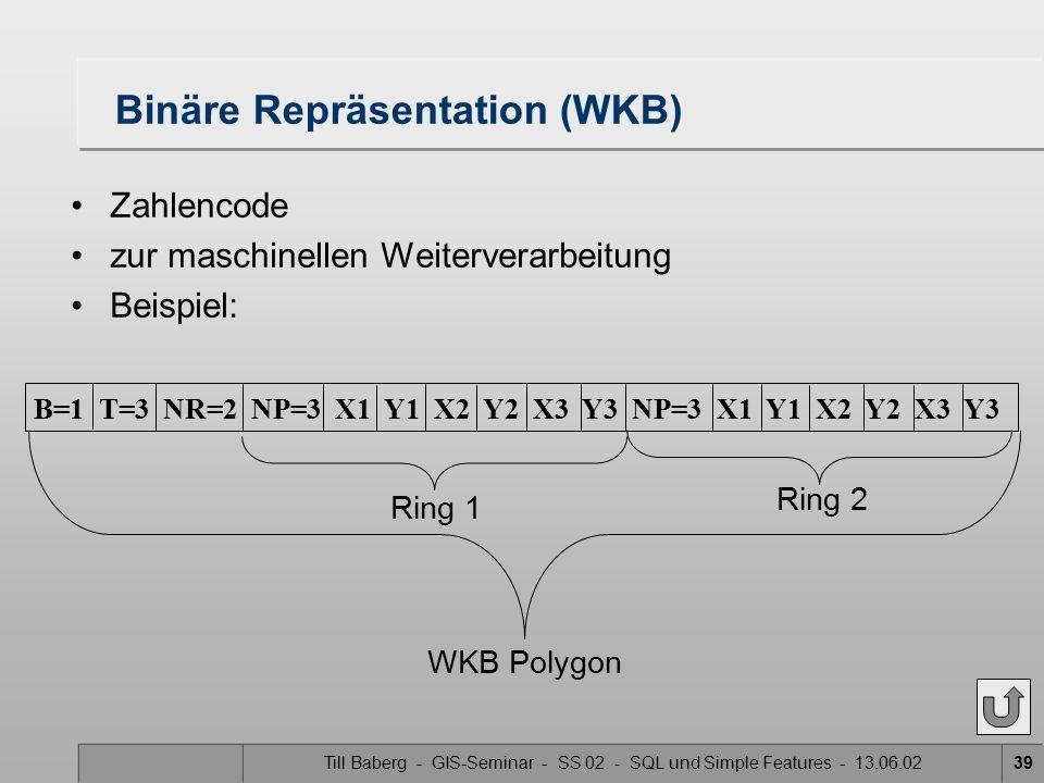 Binäre Repräsentation (WKB)