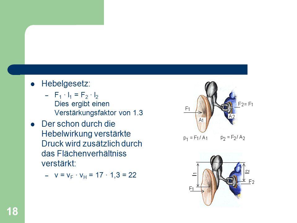 Hebelgesetz: F1 · l1 = F2 · l2 Dies ergibt einen Verstärkungsfaktor von 1.3.