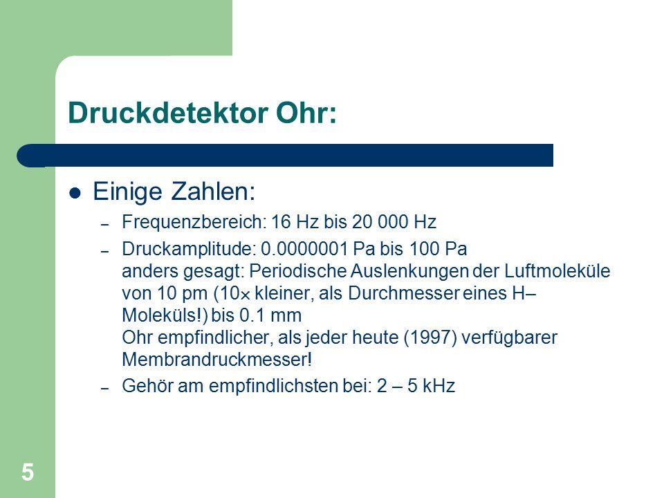 Druckdetektor Ohr: Einige Zahlen: Frequenzbereich: 16 Hz bis 20 000 Hz