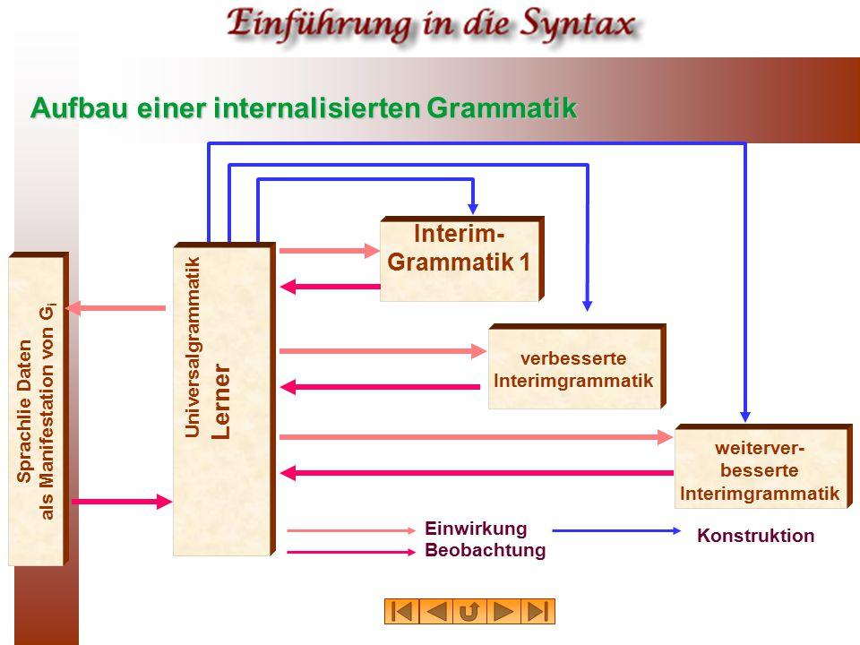 Aufbau einer internalisierten Grammatik