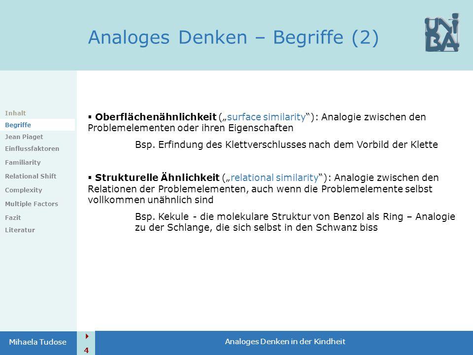 Analoges Denken – Begriffe (2)