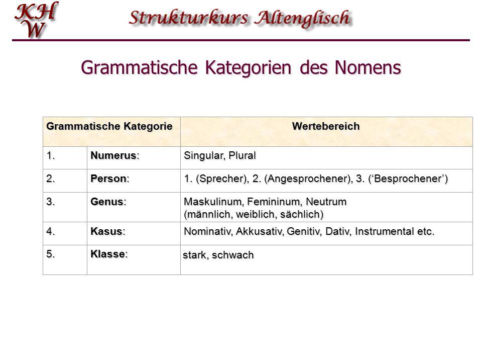 Grammatische Kategorien des Nomens
