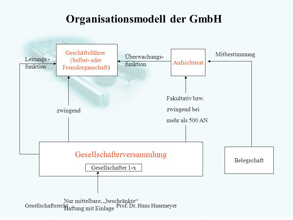 Organisationsmodell der GmbH