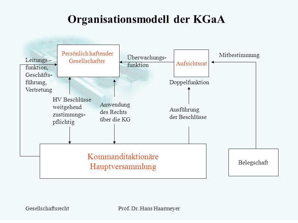 Organisationsmodell der KGaA