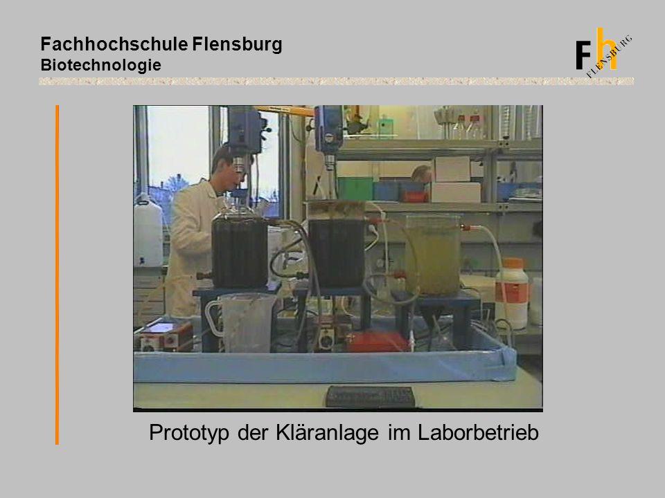 Prototyp der Kläranlage im Laborbetrieb