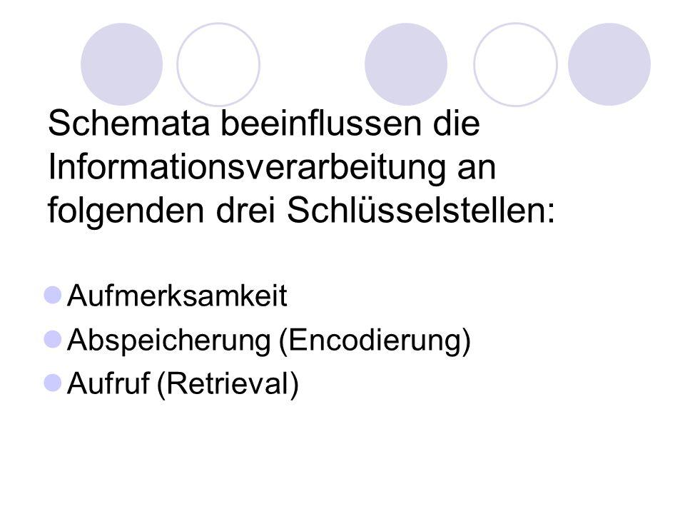 Schemata beeinflussen die Informationsverarbeitung an folgenden drei Schlüsselstellen: