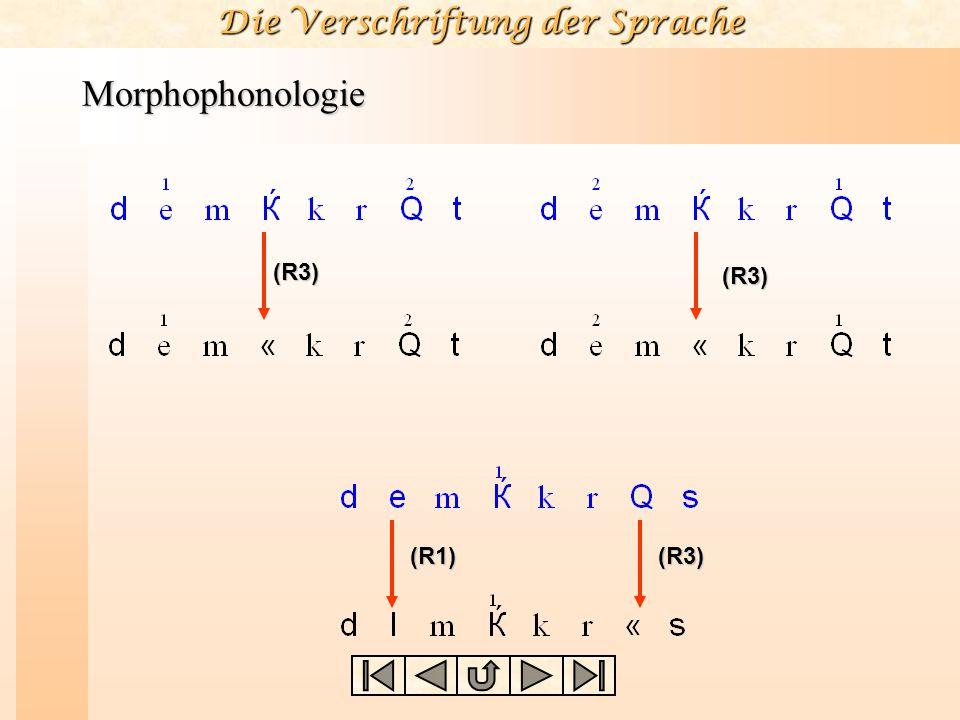 Morphophonologie (R3) (R3) (R1) (R3)