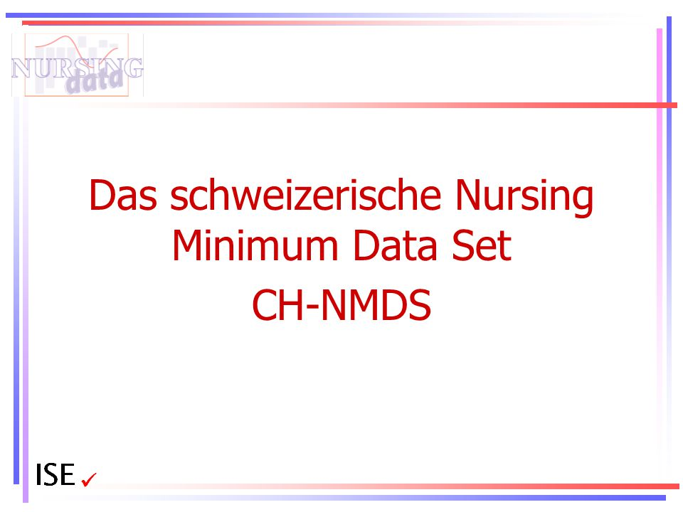 Das schweizerische Nursing Minimum Data Set