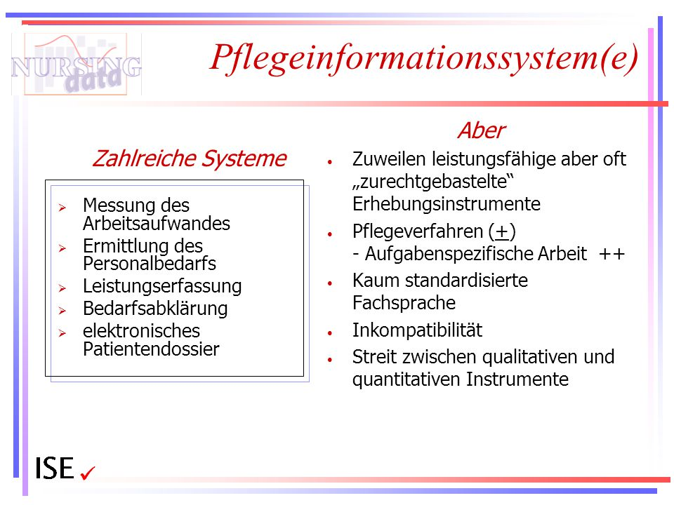 Pflegeinformationssystem(e)
