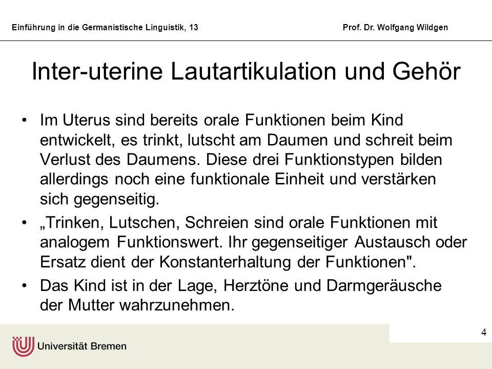 Inter-uterine Lautartikulation und Gehör