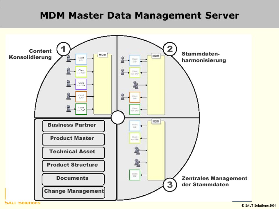 MDM Master Data Management Server