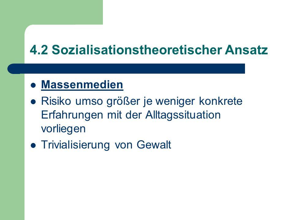 4.2 Sozialisationstheoretischer Ansatz